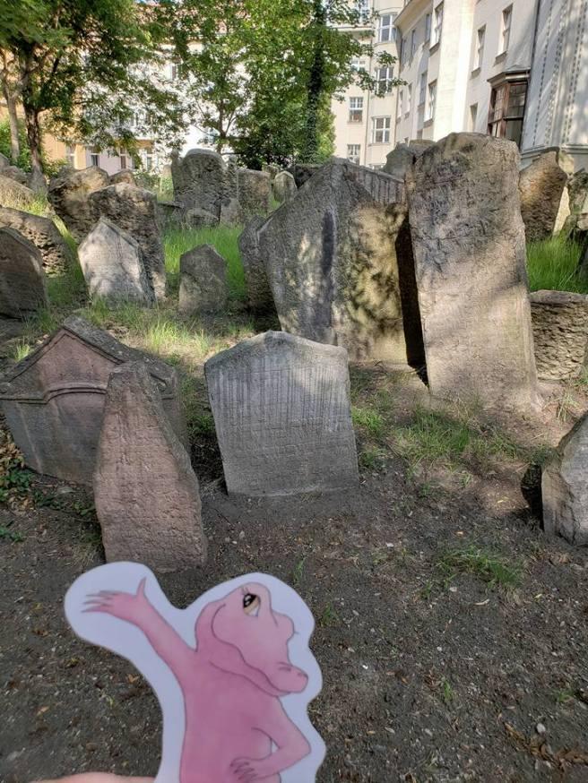 Flat Rose Travels Jewish Cemetery Landy May 2018