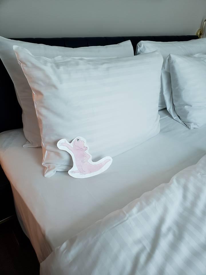 Flat Rose Travels Landy comfy bed May 2018