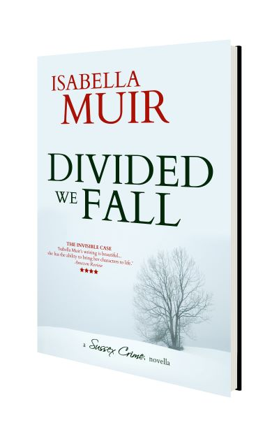 Divided We Fall 3D small